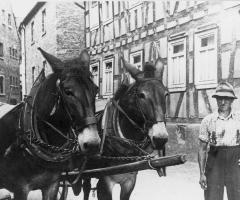 Rücker Seebornstr mit Eselfuhrwerk 348
