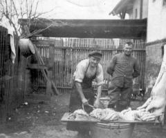Schlachttag 1941 Wendlinusstr bei Hugo Johann