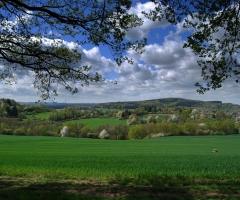 Schweinheim Blick (2)