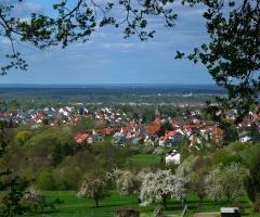 Schweinheim Blick (3)