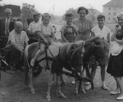 Touristenheim Adam Wehr Würzburger Str Aulbach Ponys